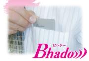 電磁波 防止 対策 グッズ Bhado ポケット